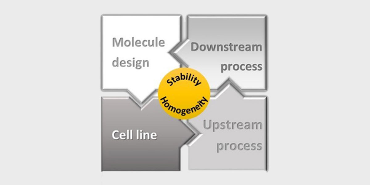 Presentation about design, structure, and manufacturability of fusion proteins at PepTalk 2018