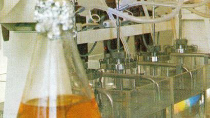 Aufbau der Sparte Biotechnologie